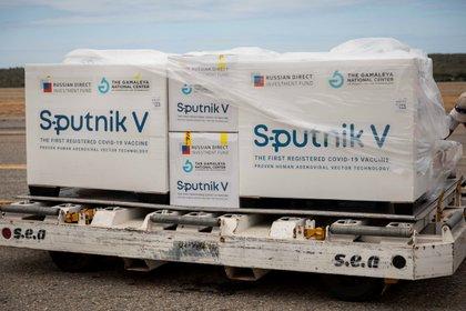 Vista de las cajas de vacunas Sputnik V (Foto: EFE/ Rayner Peña R/Archivo)