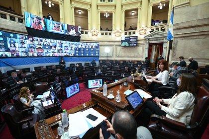 El Senado seguirá sesionando de forma remota hasta marzo (Foto: Senado)