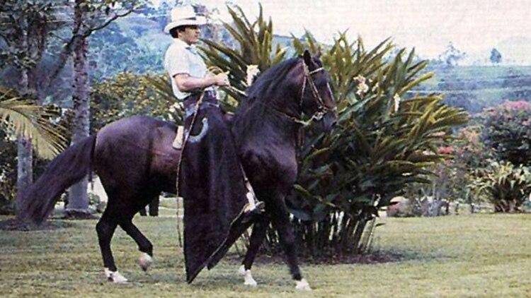 Una de sus grandes aficiones eran los caballos finos.