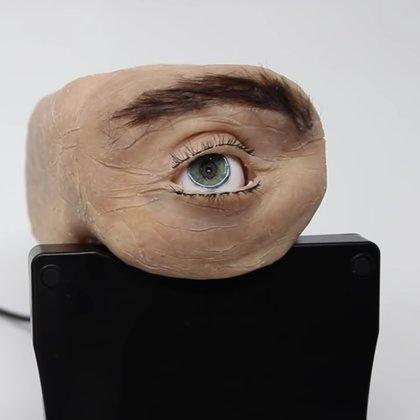 Eyecam fue desarrollada para ver el impacto que podría generar este tipo de diseños a futuro