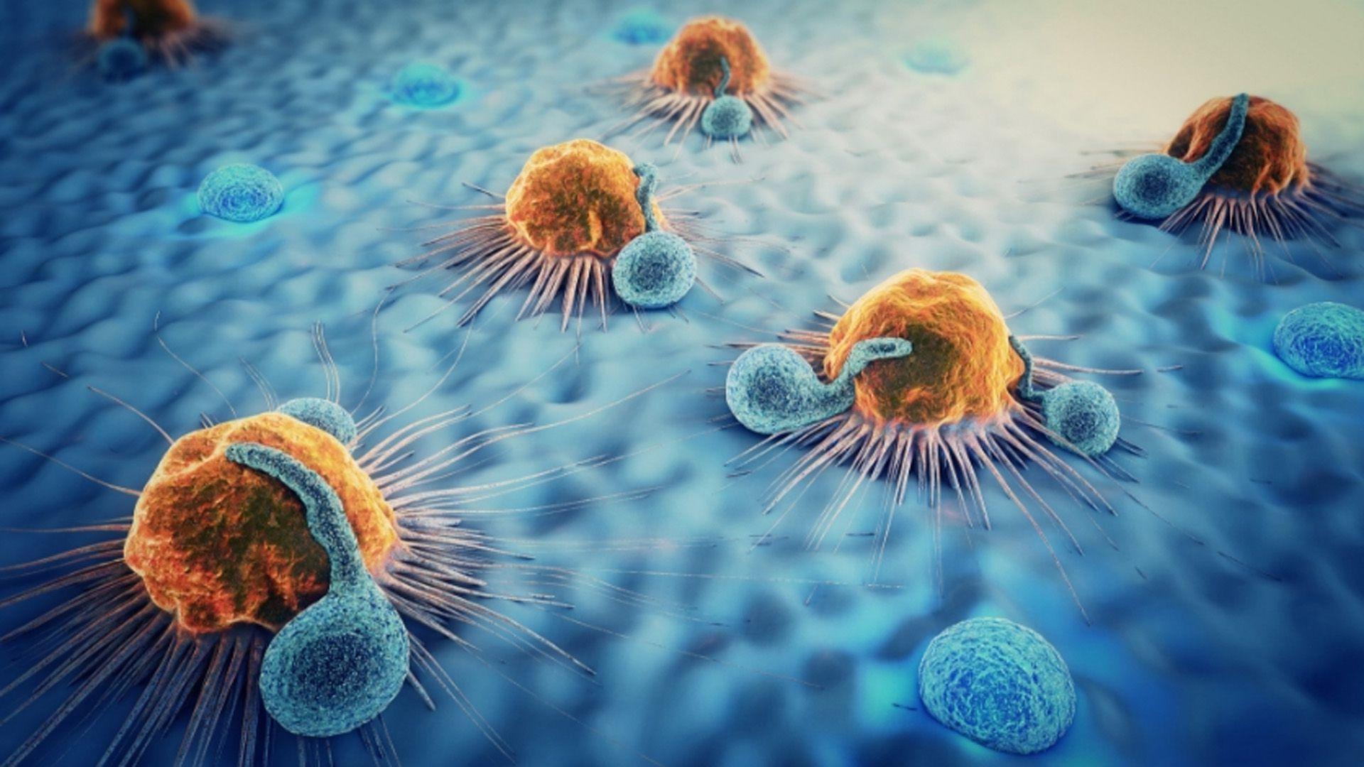 La estrategia de la inmunoterapia es utilizar, activar o suprimir el sistema inmune como defensa de las células tumorales