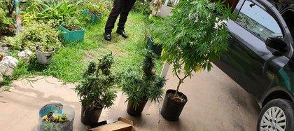 Las plantas del hijastro del principal acusado.