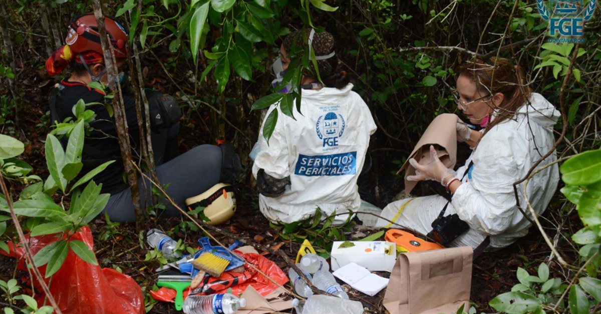 They found three clandestine graves with human remains in the jungle of Quintana Roo