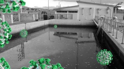 UNAM desarrolló método para detectar coronavirus en aguas residuales (Foto: Twitter / @UNAM_MX)