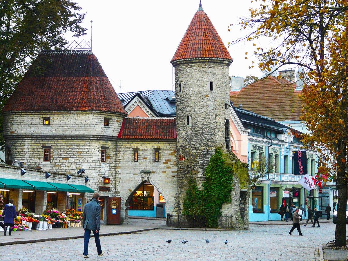Viljandi es una pequeña y adorable ciudad escondida en lo profundo de los bosques del sur de Estonia cuenta con impresionantes ruinas de un castillo, una antigua casa de la orden gobernante de Livonia (Oficina de Turismo Viljandi)