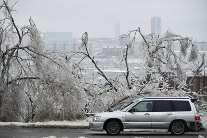 Habitantes de la región reportaron que las personas cogeladas suelen verse en este tipo de épocas o fenómenos. (Foto: Yuri Maltsev/Reuters)