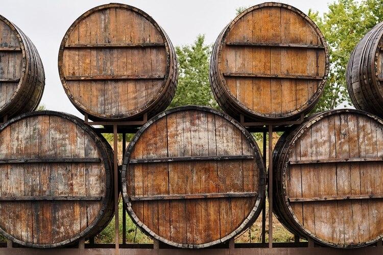 No todos los vinos son aptos para la guarda (Shutterstock)