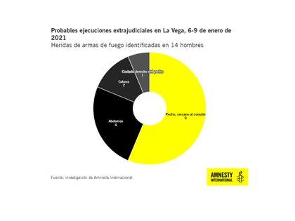 Las heridas de armas de fuego identificadas en 14 hombres (Amnistía Internacional)