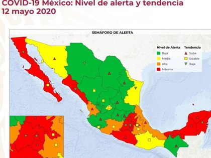 En un mapa de México se observan 11 estados coloreados en verde. (Foto: Especial)
