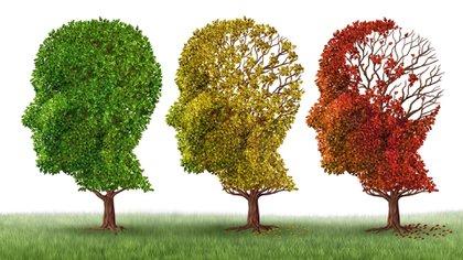 El Alzheimer, la primera causa de demencia en el mundo, afecta a casi 50 millones de personas, y podría llegar a 131 millones en 2050. (Shutterstock)