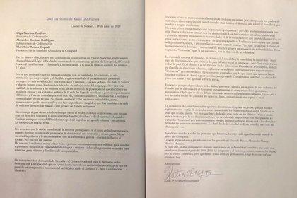 La renuncia presentada por D'Artigues (Foto: Twitter @kdartigues)