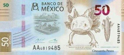 El anfibio estará en el reverso del papel moneda. (Foto: Especial)