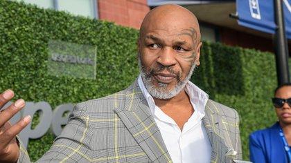 Actualmente, Tyson lidera un proyecto de cultivo de cannabis en California (Shutterstock)