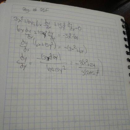 Una profesora que imparte clases en la UNAM se acerca todas las semanas a casa de Adhara para enseñarle cálculo y matemáticas (Foto: cortesía de Nallely Sánchez)