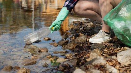 Invasión de cianobacterias en Puerto Madero en 2020 (Foto_ María Ungaro)
