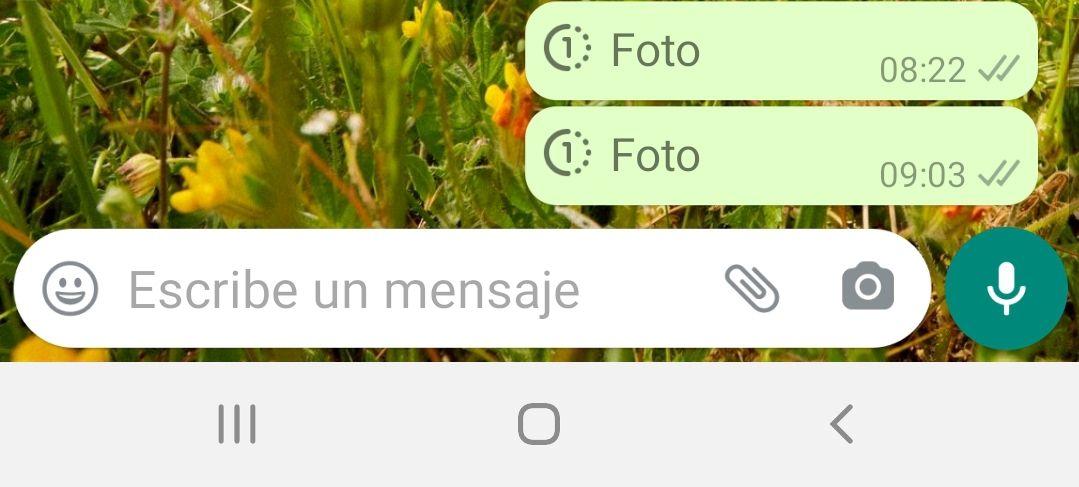 Fotos y videos que se autoeliminan en WhatsApp