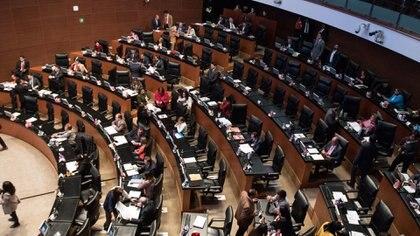 Los senadores aseguraron que no pararán hasta que las autoridades sanitarias se los indique (Foto: Cuartoscuro)