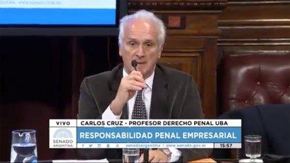 Carlos Cruz al exponer en el Senado en agosto de 2017 sobre el proyecto de la ley penal empresaria