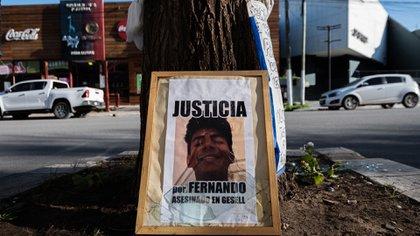 Memento: el árbol frente a Le Brique donde fue asesinado Fernando (Diego Medina)