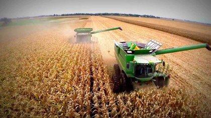 Los efectos del Plan de Convertibilidad en el sector agropecuario provocó la desaparición de muchos productores