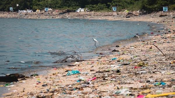 Los microplásticosdañan la vidamarina y la alimentación humana. (Jilson Tiu/Greenpeace)