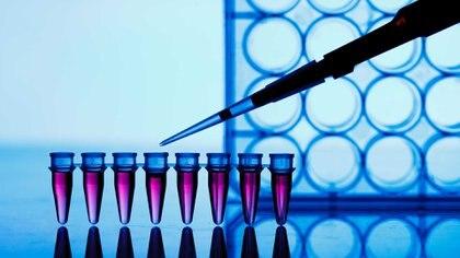Daratumumab es el primer anticuerpo monoclonal aprobado para el tratamiento del mieloma múltiple (iStock)