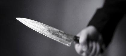Cuchillo, imagen de referencia.
