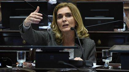 Silvia Elías de Pérez, senadora nacional, dijo que el proyecto formaba parte de la interna contra el ministro Guzmán