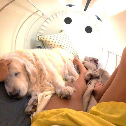 Alexis con su perro en su cámara hiperbárica (@alexis_officia1)