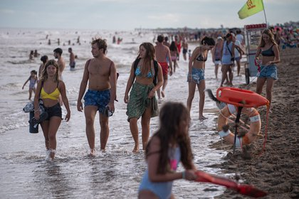 In Pinamar there were not many chinstraps when going to the beach (Diego Medina)