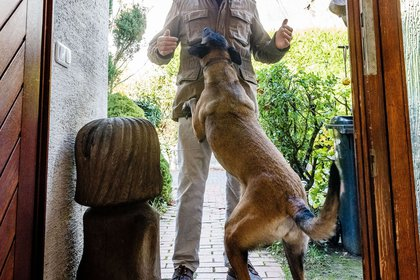 They say that dogs are man's best friend, but everything can change if they are mistreated (Photo: DPA)