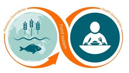La comisión EAT- Lancet busca aportar soluciones al problema del hambre y la falta de alimentos en el mundo a futuro