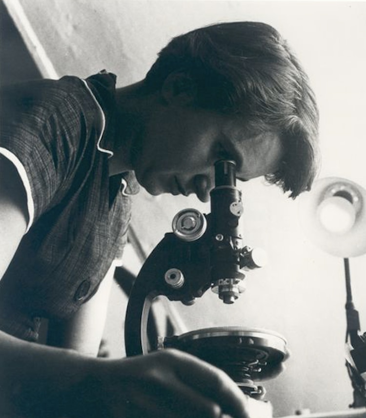 Rosalind Franklin MRC Laboratory of Molecular Biology/Jenifer Glynn