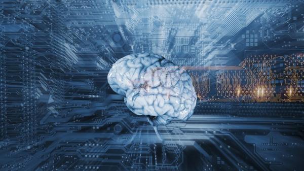 El cerebro posee estructuras tan complejas que es difícil determinar el estado demuerte cerebral(Shutterstock)