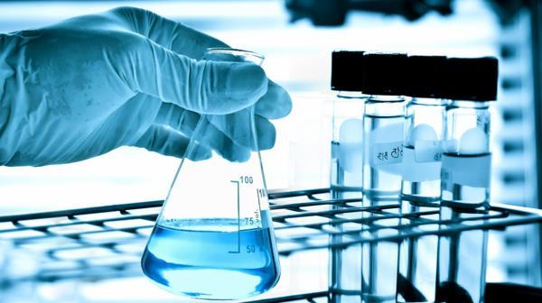 Hood y Kibar investigan el gen Wnt para revivir tejidos blandos viejos y así combatir tumores. (Shutterstock)