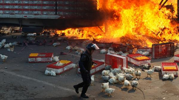 En los últimos días, las protestas se intensificaron a raíz de dos detenciones (Reuters)