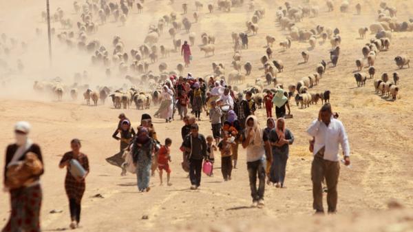 Yazidíes desplazados por la guerra (AP)