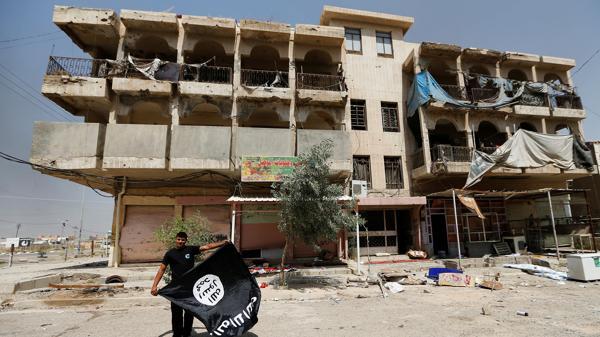 Un hombre despliega una bandera de la organización terrorista Estado Islámico en Faluya. (Reuters)