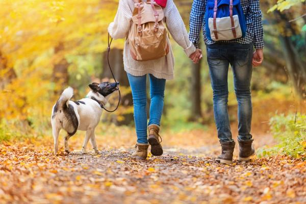 El ejercicio es fundamental como acompañamiento de la alimentación (Shutterstock)