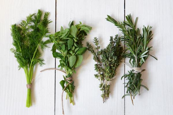 Las propiedades fitoquímicas de las hierbas son muy beneficiosas para la salud (Shutterstock)