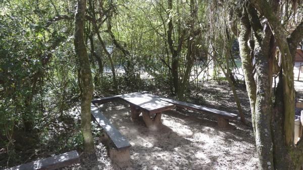 Área de descanso en la entrada de la reserva (R.Peiró)
