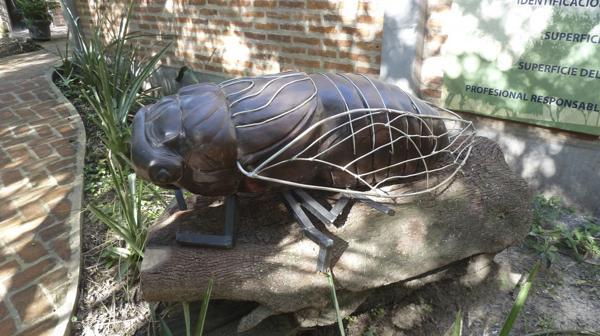 Coyuyo (cigarra), escultura donada por la Fundación Urunday a la reserva Los Chaguares (R.Peiró)