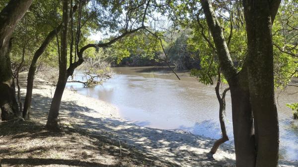 """Los Chaguares se encuentra en el sitio Ramsar """"Humedales Chaco"""" (foto: R.Peiró)"""