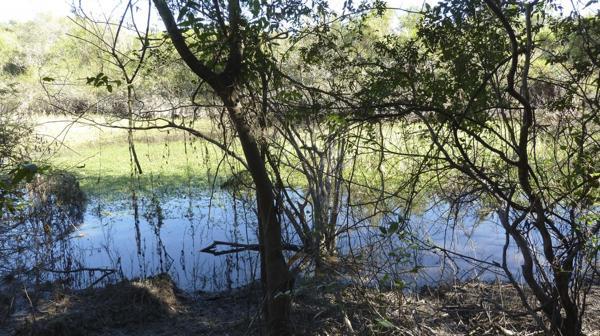 La reserva Los Chaguares fue creada mediante un convenio entre el propietario y la Dirección de Fauna en el marco de la Ley de Bosque Nativo (foto: R.Peiró)