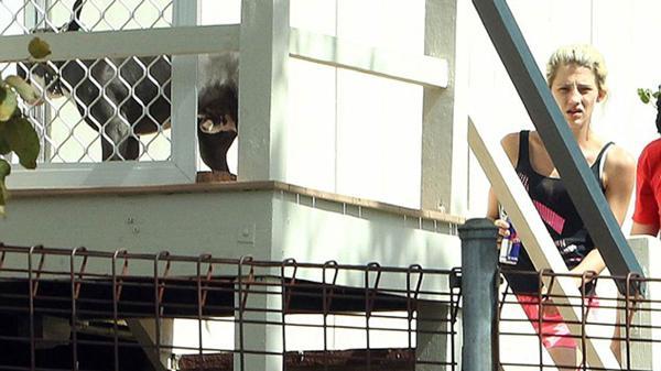 Jenna Driscoll arriba a su casa en Brisbane. Allí puede verse al pitbull