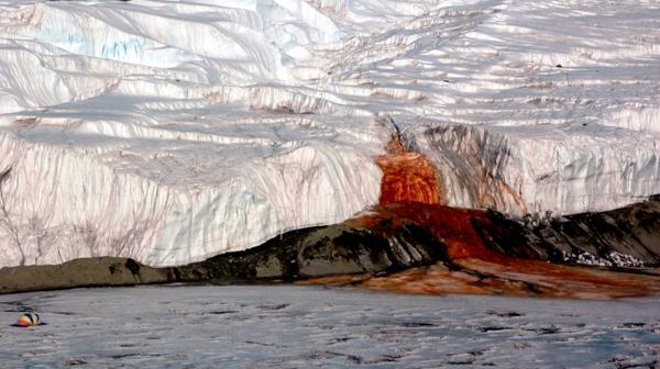 Las Cataratas de Sangre de la Antártida son uno de los fenómenos naturales más increíbles del planeta Tierra (Peter Rejcek)