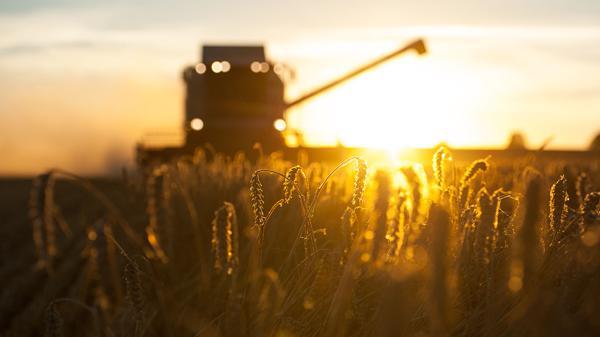 Para Dujovne, el sector externo no aportará valor agregado (AFP)