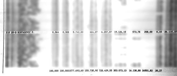 El departamento de Boudou está a nombre de Birtasevic en el resumen de expensas