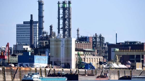 La alemana Bayer firmó el acuerdo de fusión con Monsanto (AFP)