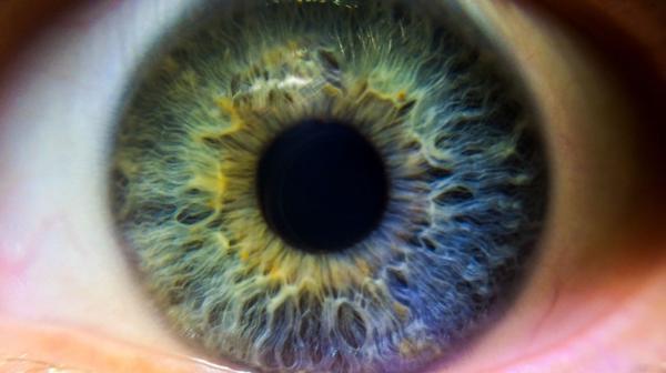 El 80 por ciento de los casos de ceguera se pueden prevenir y curar (iStock)